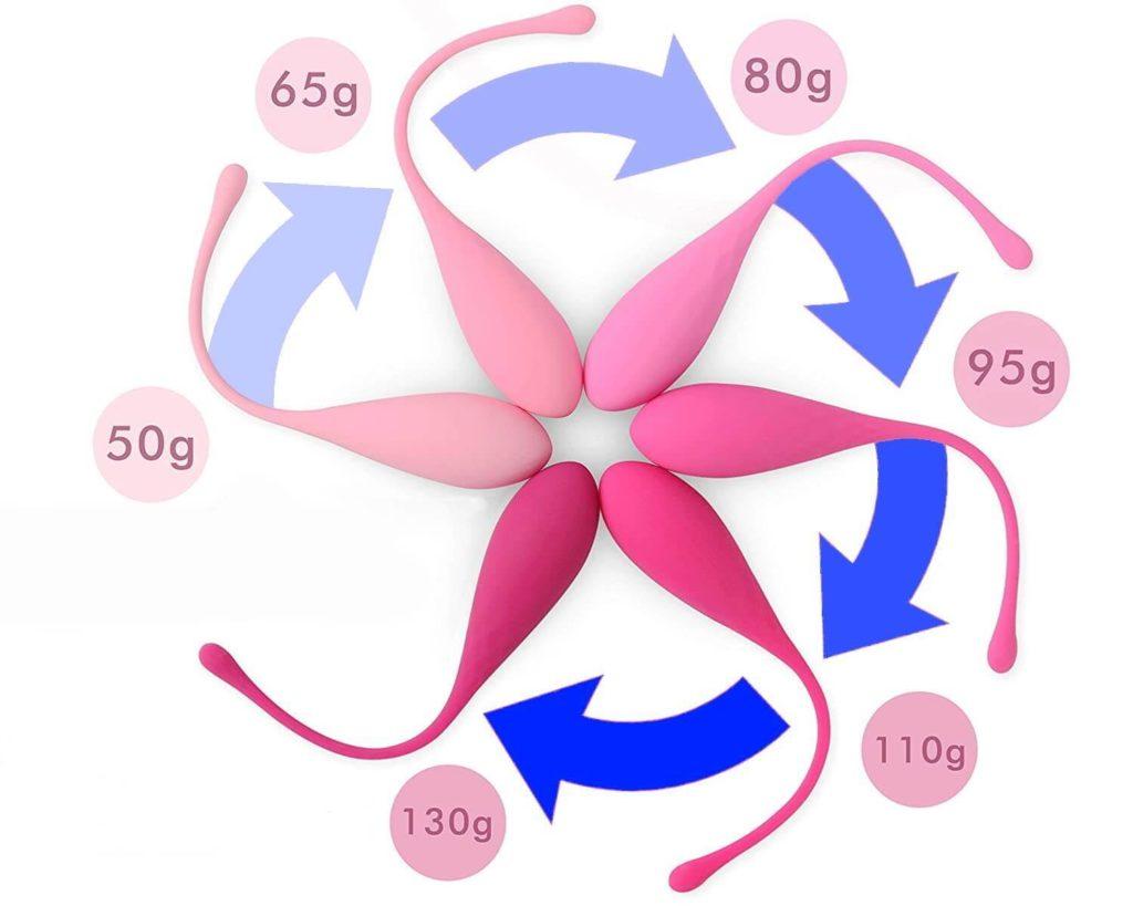משקלים במשקולות חיזוק רצפת האגן